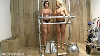 Ellie recommend First time lesbian encounter video